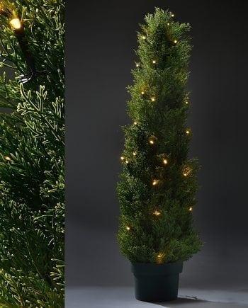 Tuja i Potte 80 LED 100 cm-0