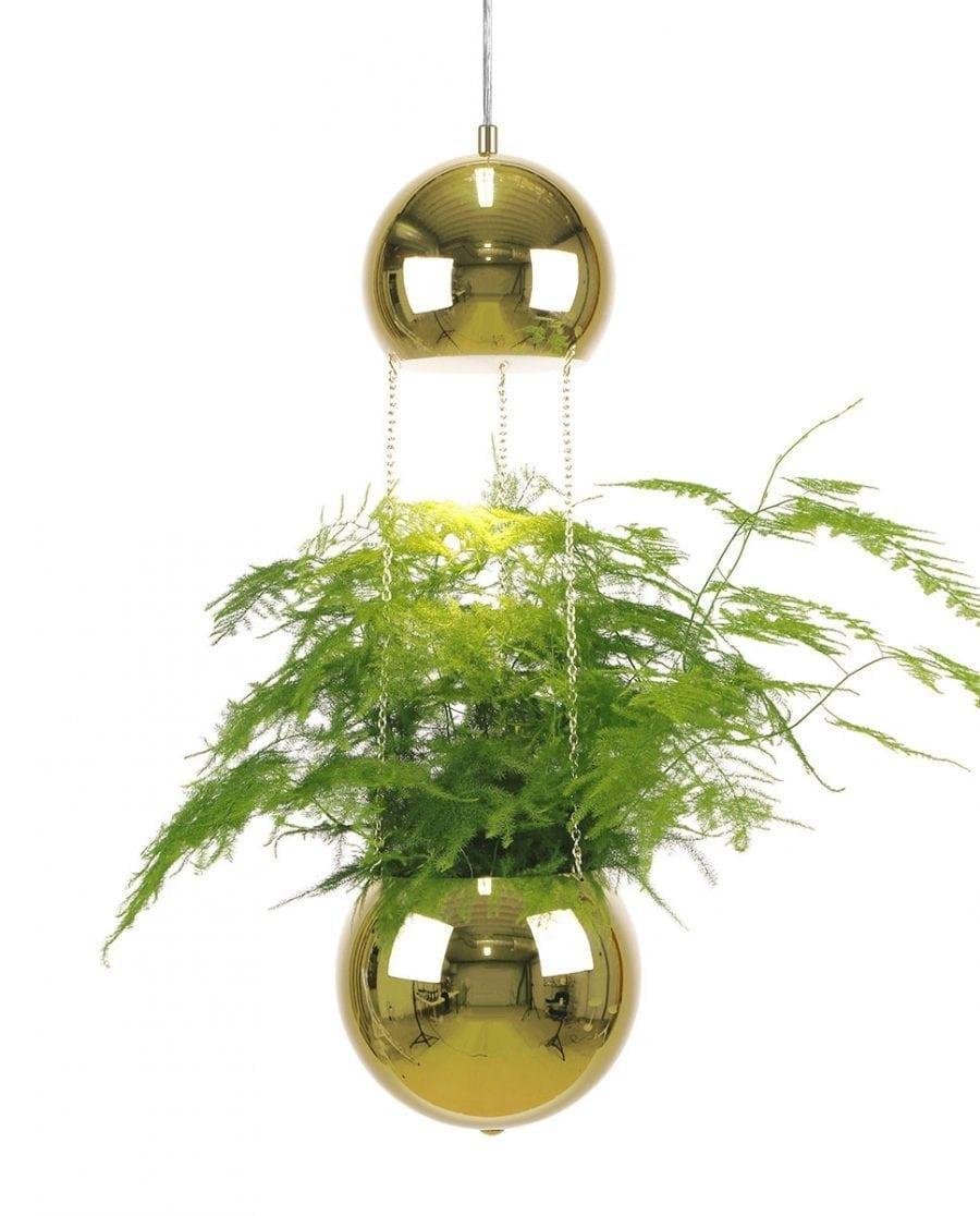 Globen Lighting Planter Messing Pendel-67786