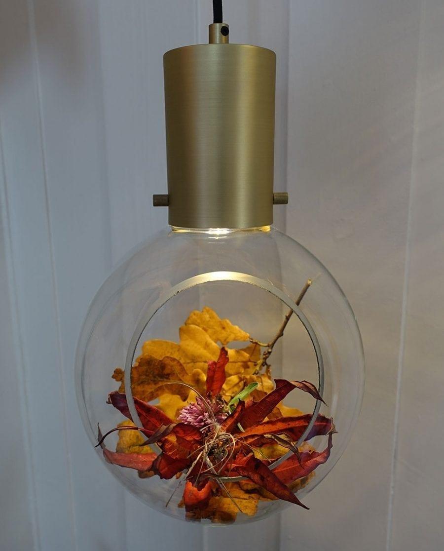 GL641055-Globen-Lighting-Mini-Hole-Klar-Børstet-Messing-Pendel_m