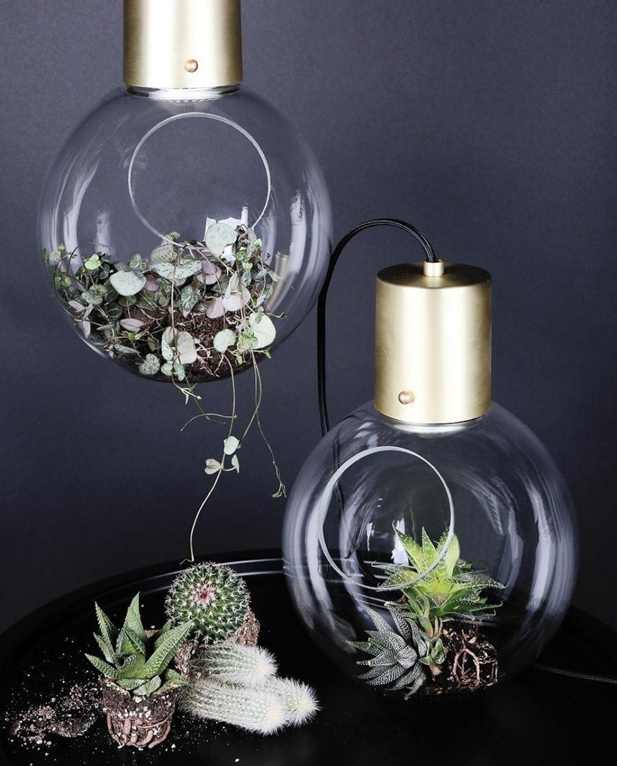 Globen Lighting Mini Hole Klar/Børstet Messing Pendel-0