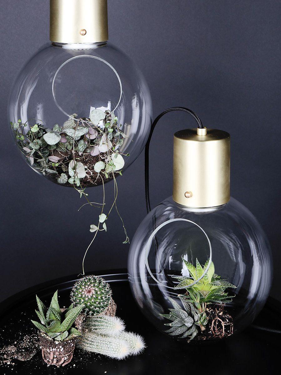 Globen lighting mini hole klar b rstet messing pendel - Globen lighting ...