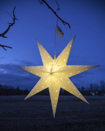 Utestående Adventsstjerner   Stort utvalg på nett av jule- og adventsstjerner! RR-87