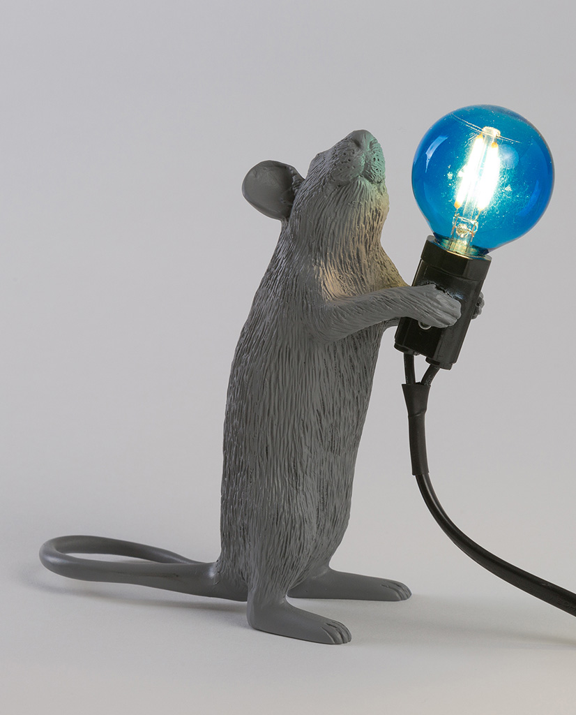149383_mouse_grey_step